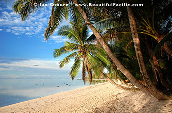 view of the beach at Tianas Beach Bungalows on Rarotonga